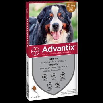 Advantix spot on 4 pipette 6 ml cani da 40 a 60 kg