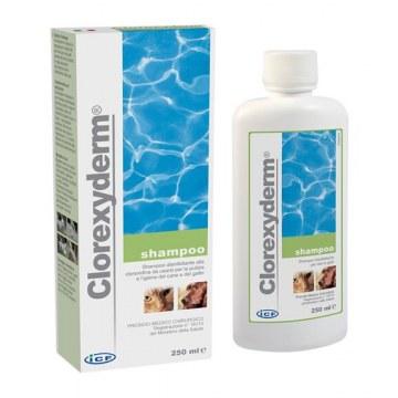 Clorexyderm shampoo 250 ml